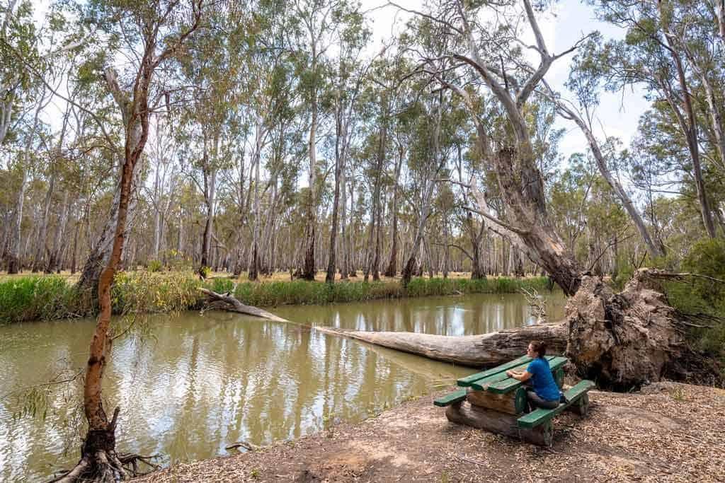 Gulpa Creek Walk