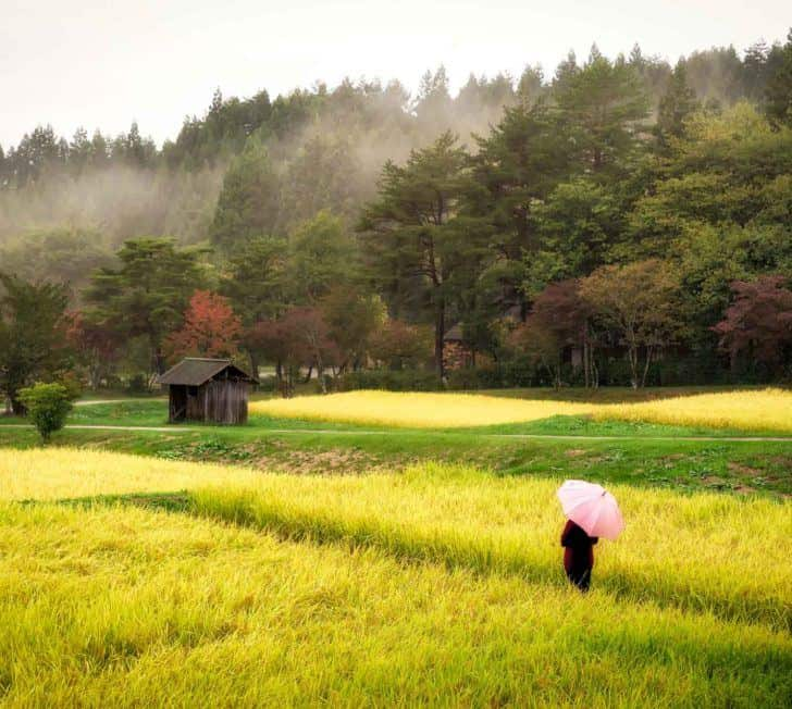 8 Reasons Why You Should Visit Tohoku, Japan on Your Next Trip