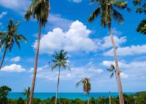 The 22 Best Things to Do in Koh Samui, Thailand