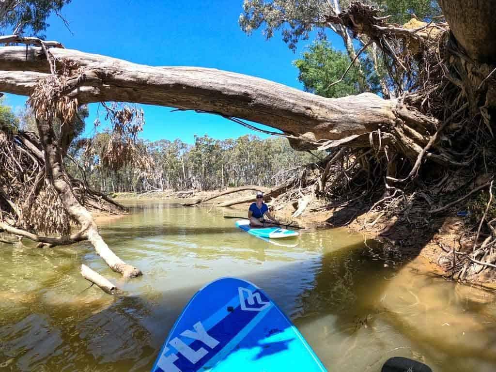 Murray River SUP