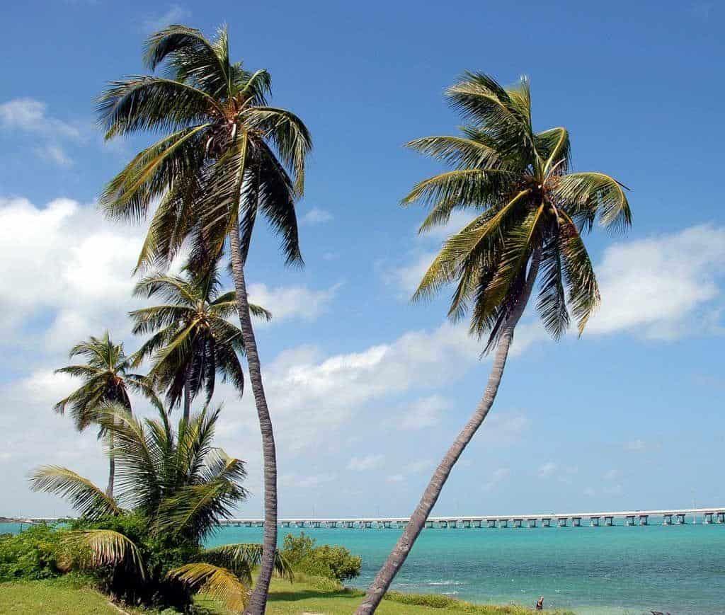 Bahia Honda Key West