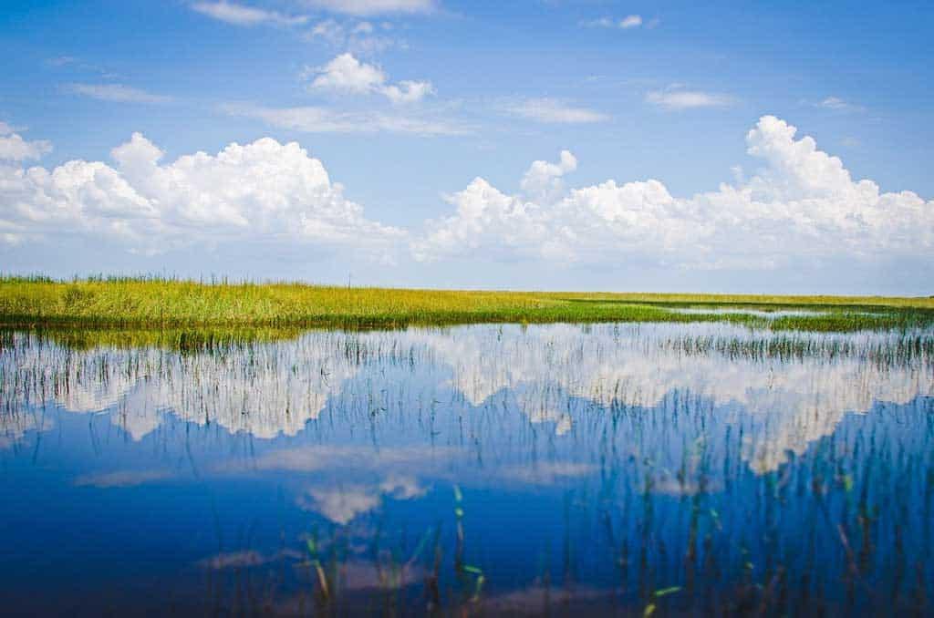 Everglades Miami Itinerary