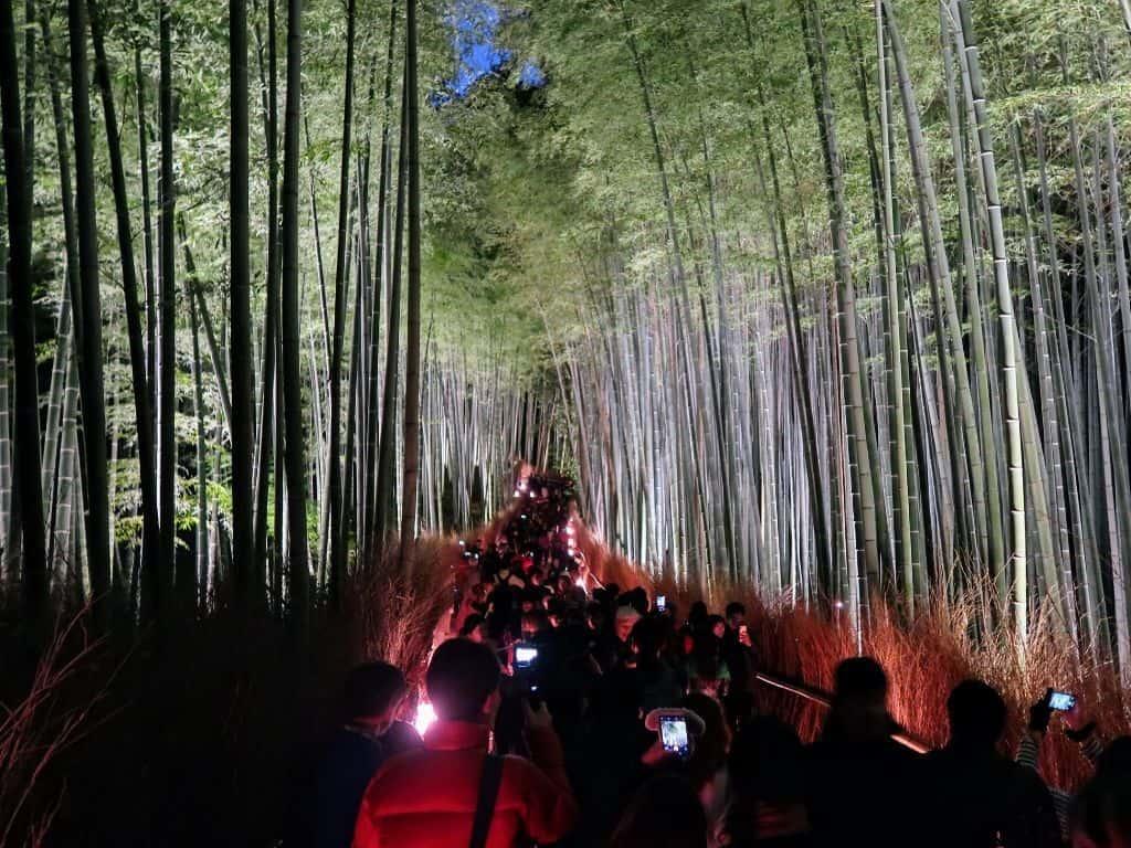 Lamps And Lanterns Light Of The Arashiyama Bamboo Grove