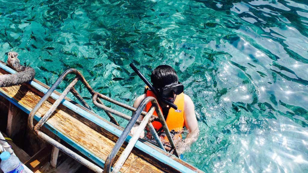Peak tourist season is the best time to go snorkeling or diving in Thailand, but Shoulder season is a close second.