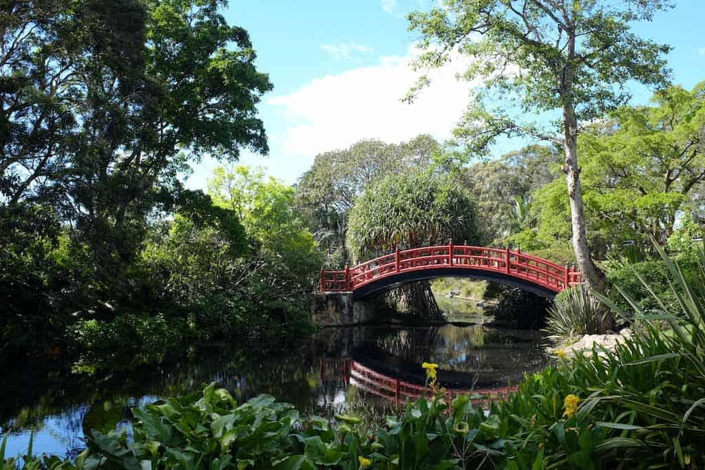 Botanic Gardens Things To Do In Wollongong!