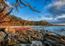 The 21 BEST Things to Do in Jervis Bay (Epic 2021 Guide)