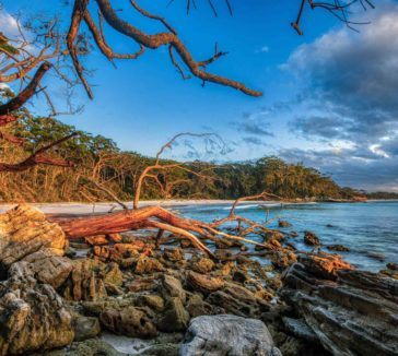 Things to do in Jervis Bay Australia