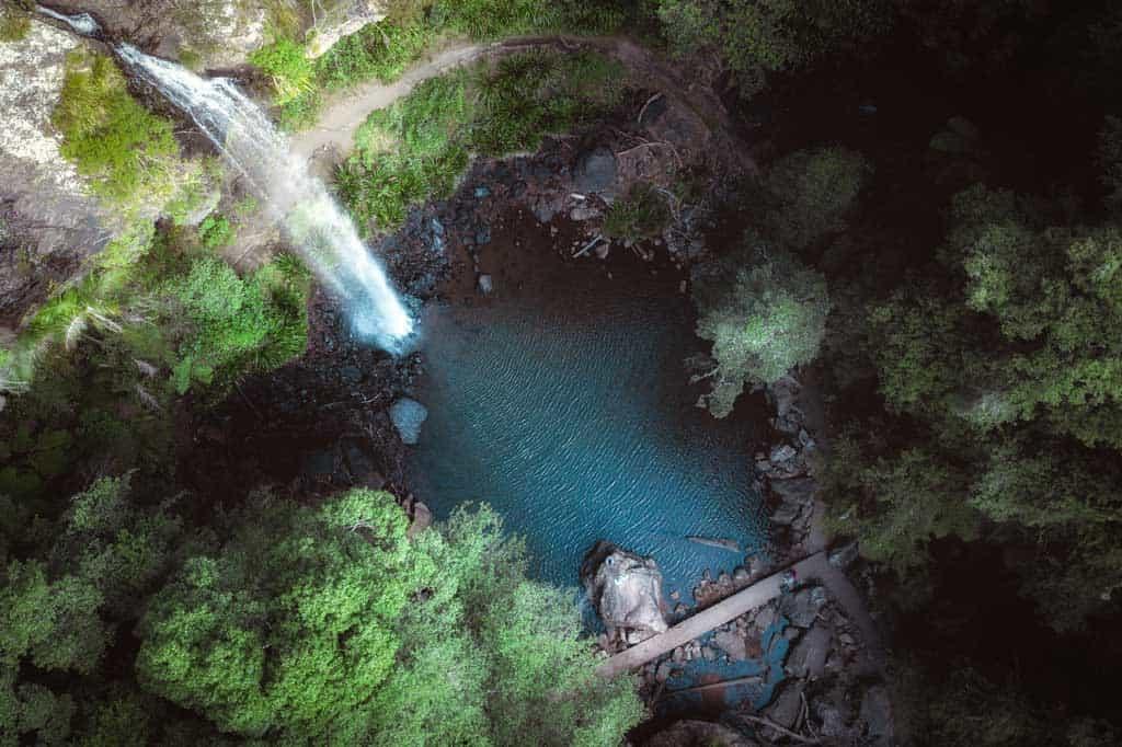 Twin Falls Springbrook National Park