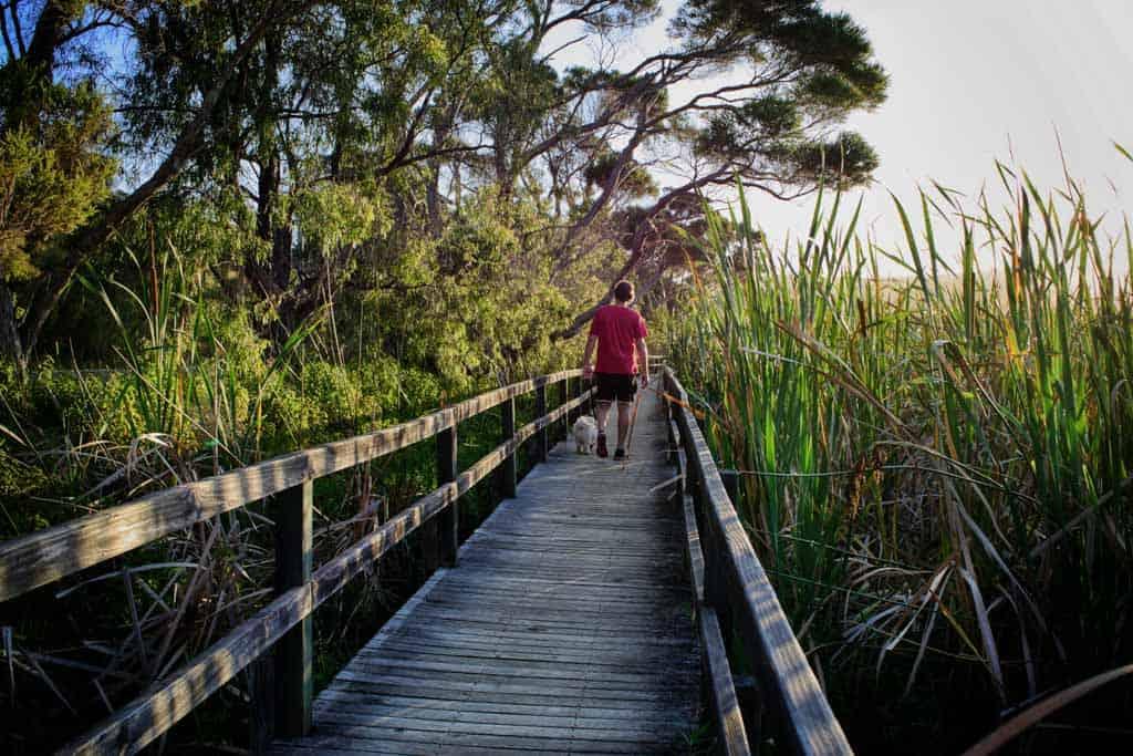 Hike Through Albany Heritage Park