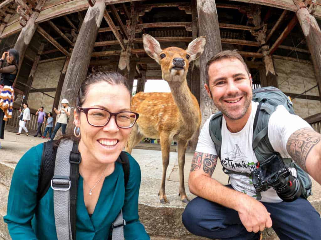 Us Deer Nara Japan