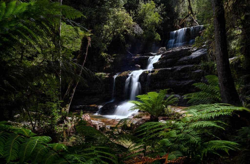 Liffey Falls Cpl Filter