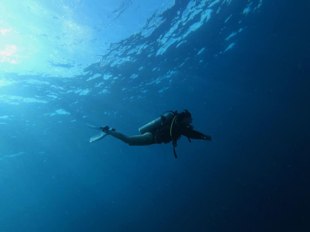 Scuba Diving In Busselton