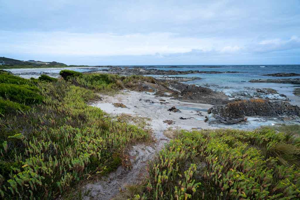 Coastline Nelson Bay