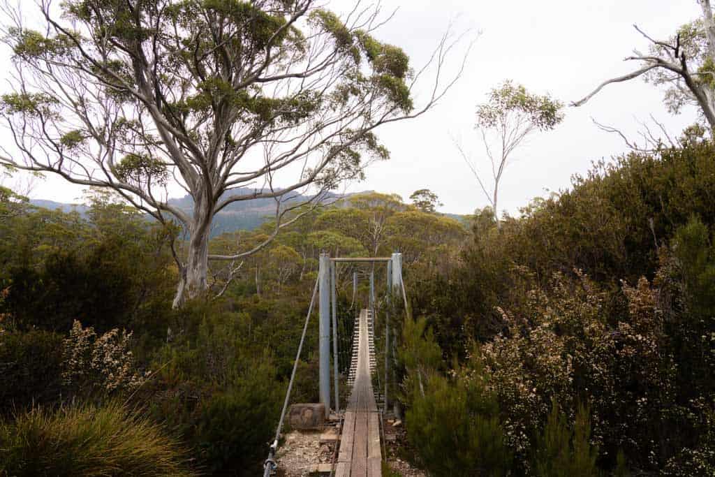 Pine Valley Suspension Bridge