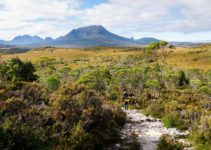 The Ultimate Guide to Hiking the Overland Track in Tasmania