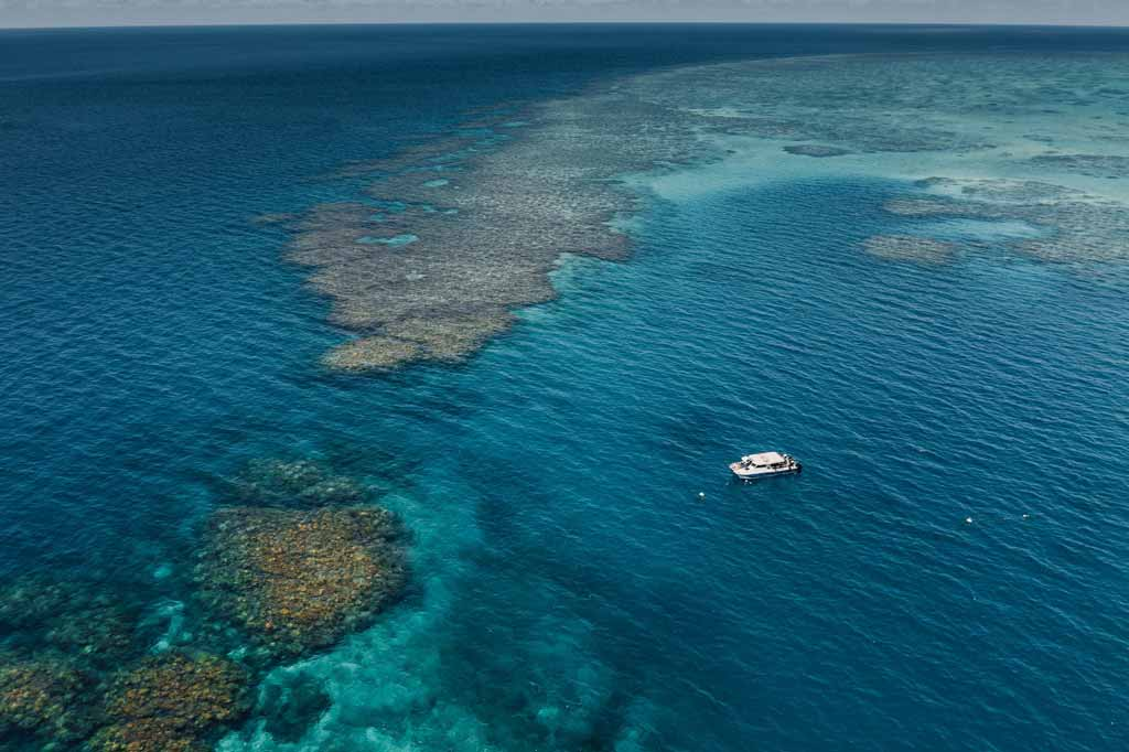 Great Barrier Reef Things To Do In Townsville