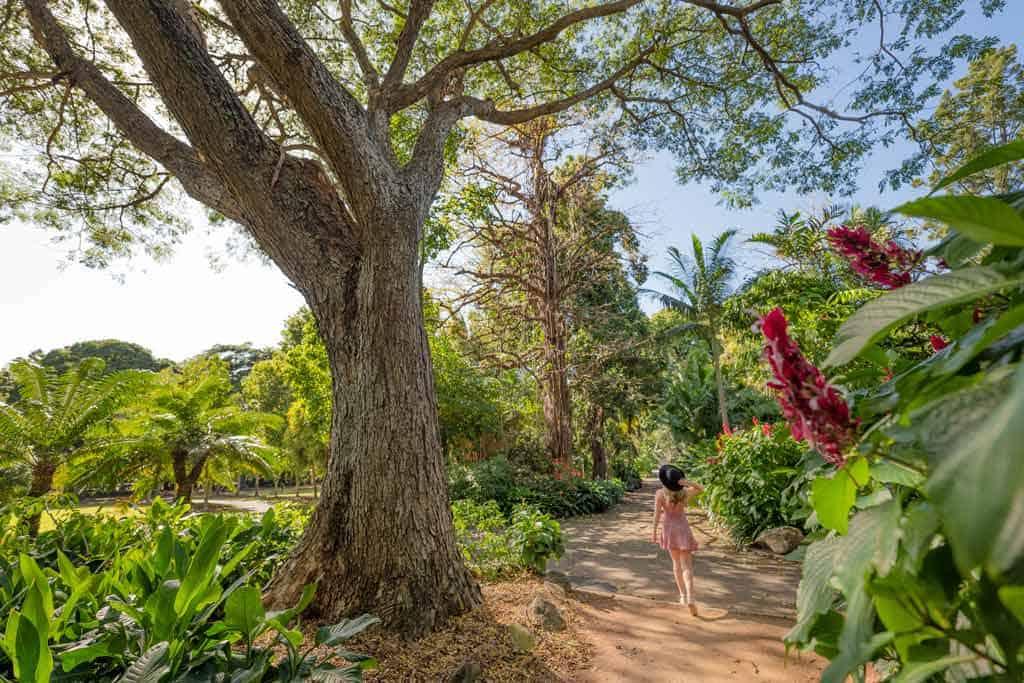 Queens Gardens Townsville